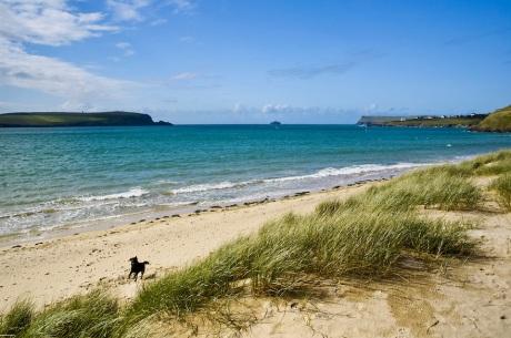 Camel Estuary - Daymer Bay, Polzeath, North Cornwall