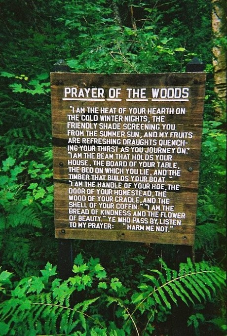 Prayerofthewoods