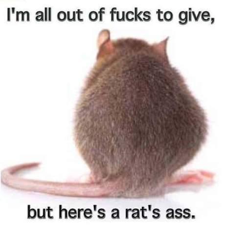 ratsass