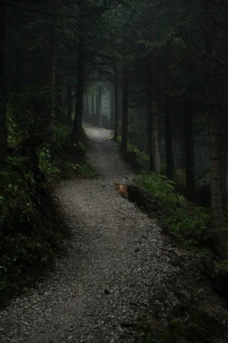 followtheway