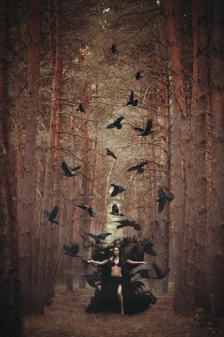 witchandbirds