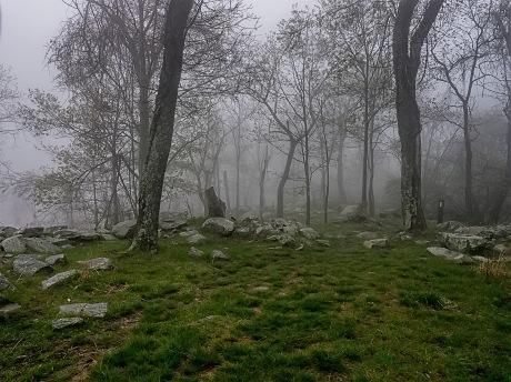 Fog-On-The-Barrow-Downs