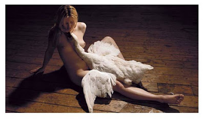 Leda and swan -The white rush - sam taylor-wood
