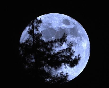 Moon-mind