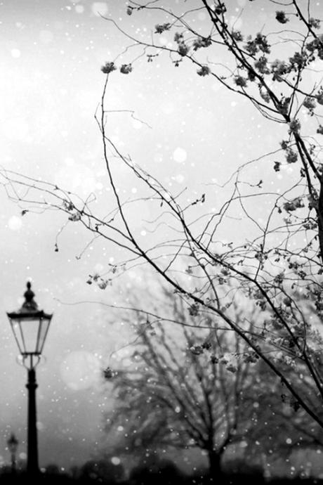 snowandlamp