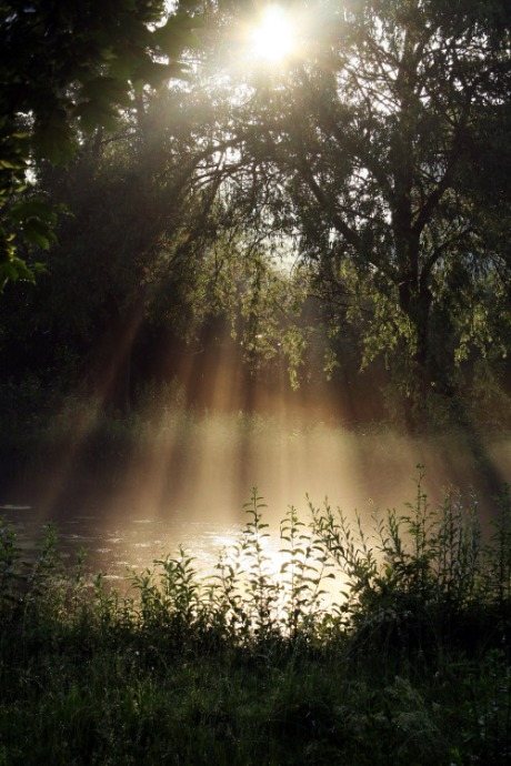 sunlight-and-water