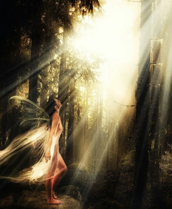 Lost Mystical Fairy - Frits Vrielink