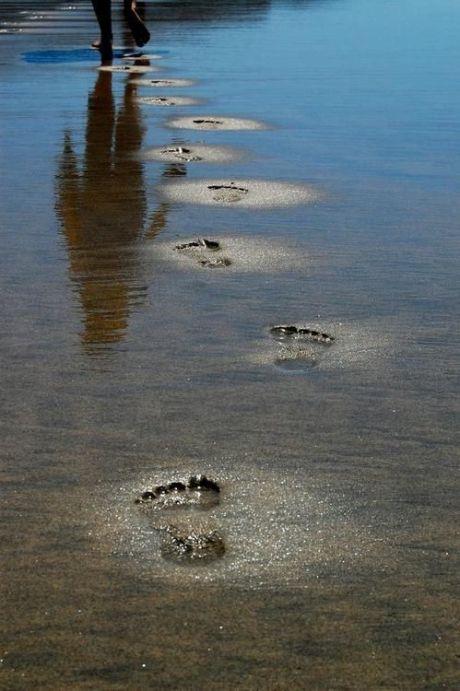 Footprints through time