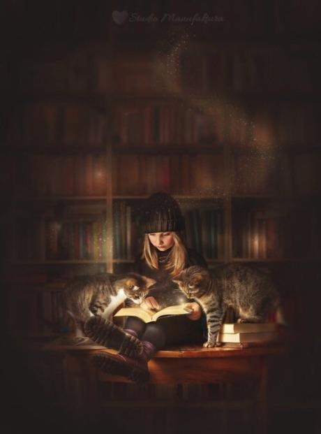Thieves books by ajfilipowska